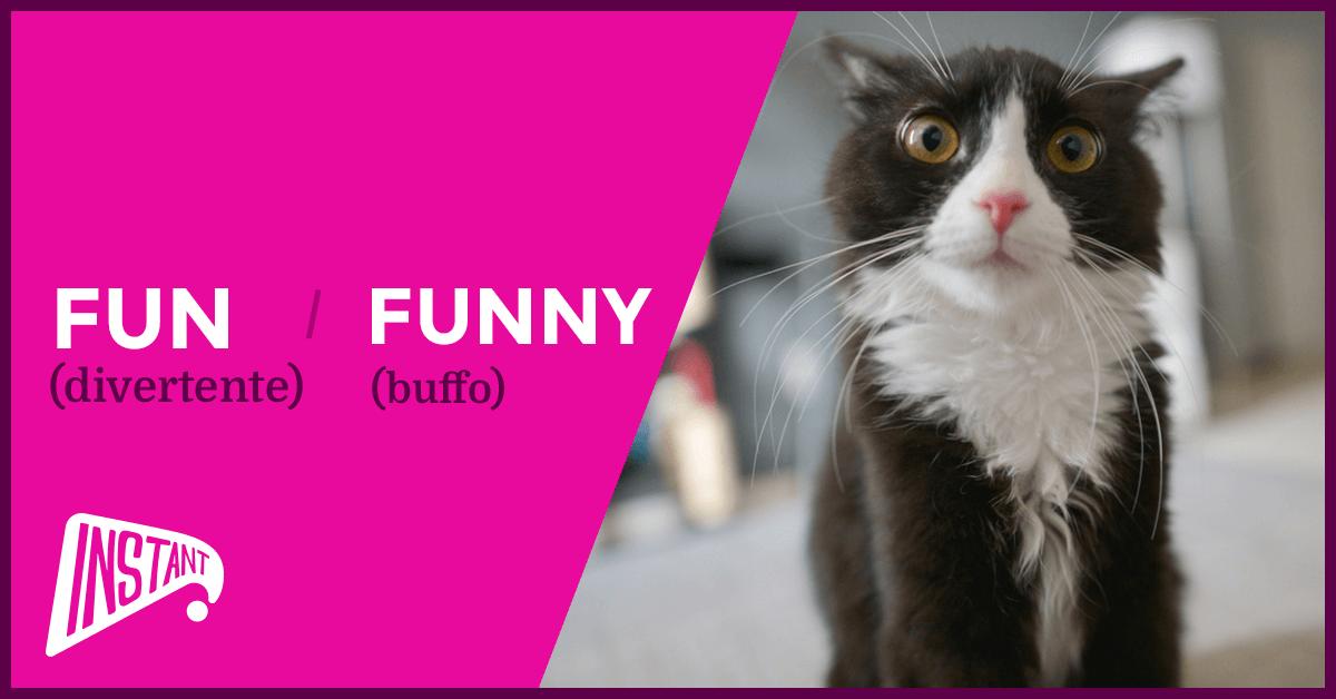 QUICK ARTICLE: La Differenza Tra Fun e Funny