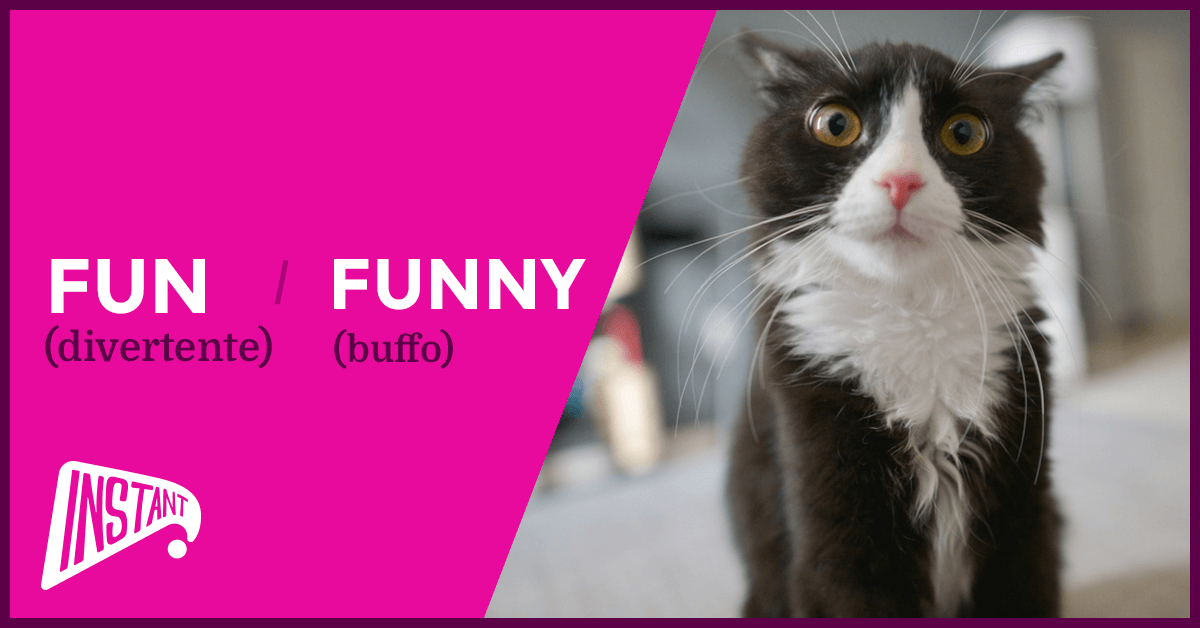 QUICK ARTICLE: La Differenza Tra Fun e Funny