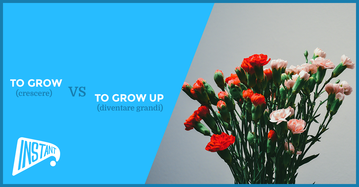 [QUICK ARTICLE] La Differenza Tra To Grow e To Grow Up