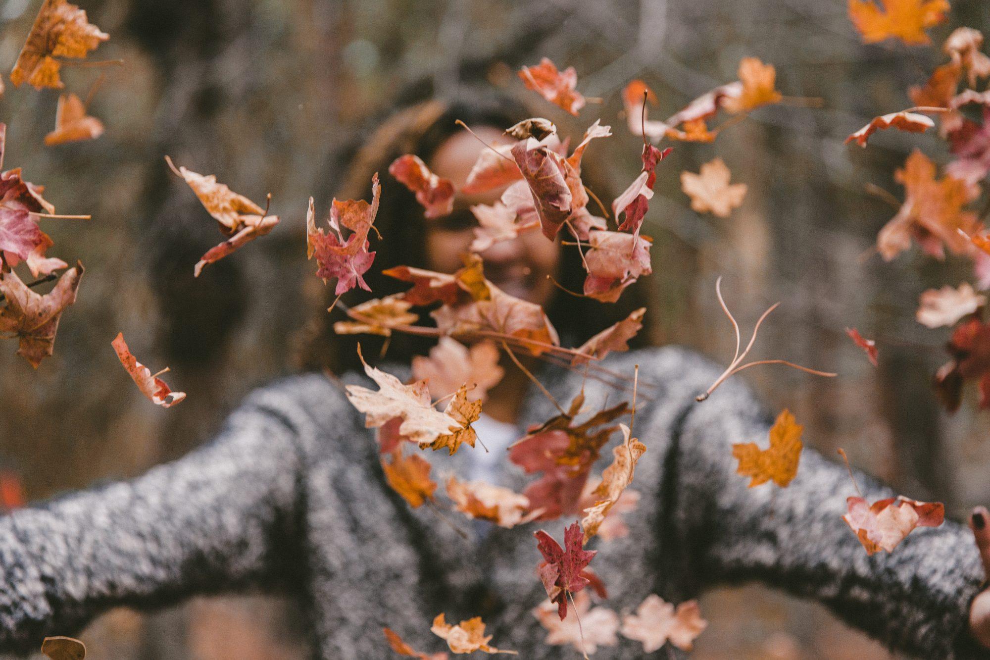 I Phrasal Verbs Della Settimana: Scopri Il Verbo To Fall